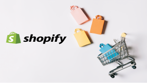 shopify store cost
